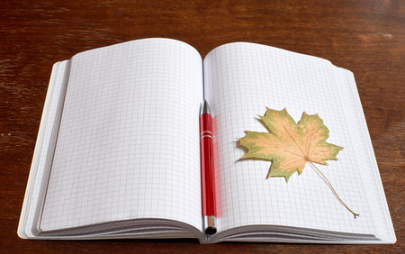 red pen: Yellow leaf and red pen on the copybook