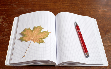 red pen: Leaf and red pen on the copybook Stock Photo