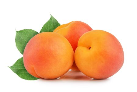 apricots: apricots isolated Stock Photo