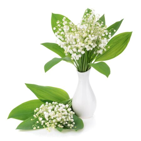 lily flowers: Lilies of the valley on white background Stock Photo