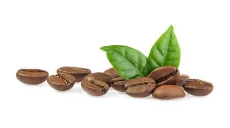 잎 커피 곡물 격리 스톡 콘텐츠