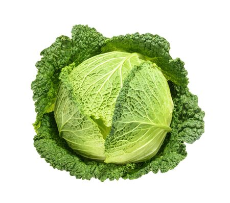 savoy: Savoy cabbage isolated without shadow Stock Photo