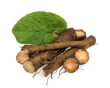 Burdock root isolated Banque d'images