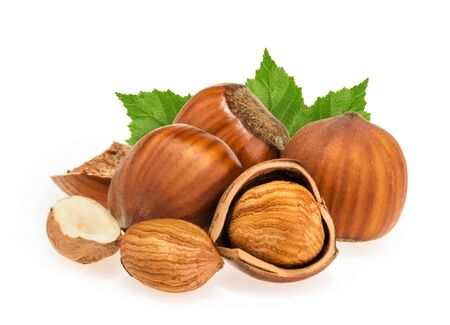 avellan: Hazelnuts isolated on white Stock Photo