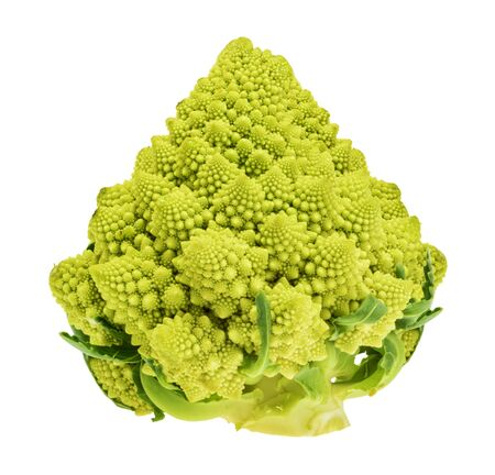 Romanesco cauliflower isolated without shadow