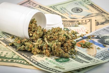Marijuana buds on money