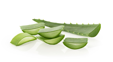 Aloe vera plant on white background