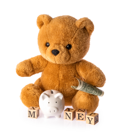 Teddy bear. Money savings concept isolated white background