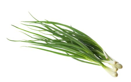 bunch of green onions isolated without shadow clipping path