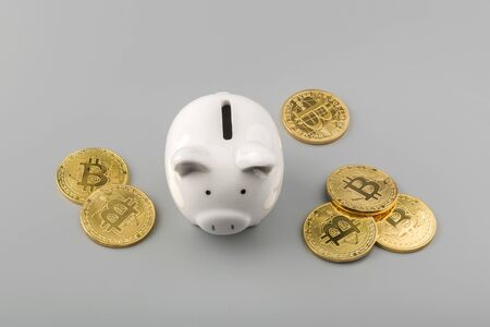 bitcoin and piggy bank savings concept top view