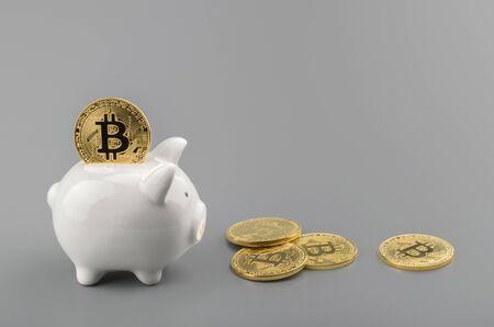 bitcoin and piggy bank savings concept