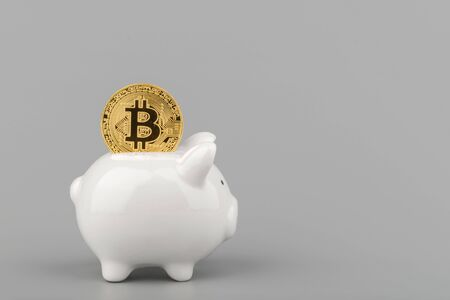 bitcoin and piggy bank savings concept