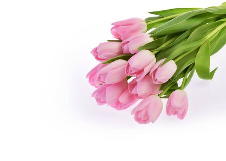 pink tulip flowers isolated on white Stock fotó