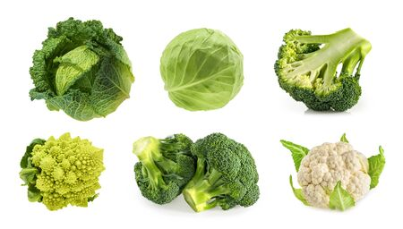 Different types of cabbage isolated on white background Stock fotó