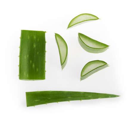 Aloe vera sliced plant isolated white background Banque d'images - 154302100