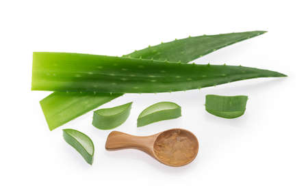 Aloe vera plant isolated white background Banque d'images