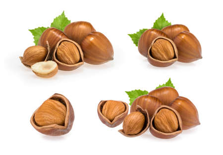Hazelnuts isolated on white background Banque d'images