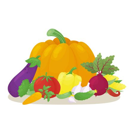 Colorful still life with vegetables. Pumpkin, garlic, tomato, cucumber, eggplant, corn, peas, beet, carrot, broccoli, bell pepper and chili. Grouped and can be used separately. Vector illustration