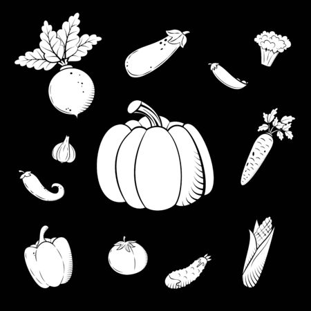 Hand drawn sketch set vegetables. Organic vegetarian food. Vector illustration for print, web, mobile and infographics isolated on black background