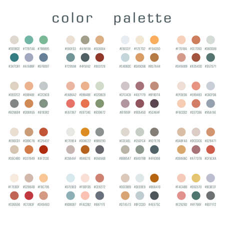 Set of color palettes. Collection of swatches. Vector illustration 矢量图像