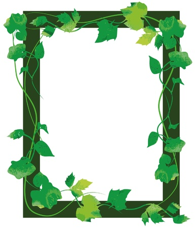 frame made of green leaves