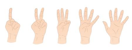 Hands Stock Vector - 21045617