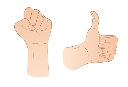Fist And Thumb Up Stock Vector - 21893560