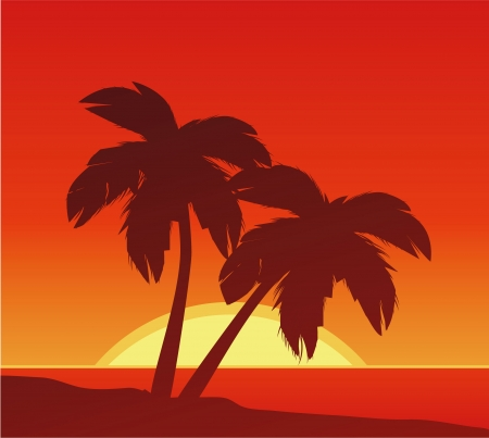 Beach Sunset Stock Vector - 21893585