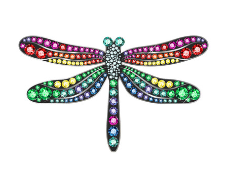 Gem Dragonfly Vector