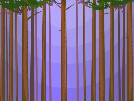 early in the evening: Abstract Pine Forest