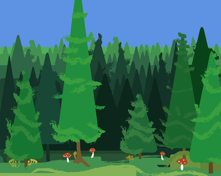 mere: abstract spruce forest landscape