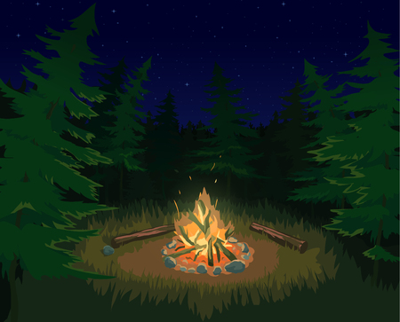 bonfire night: Night Landscape with spruce trees and bonfire