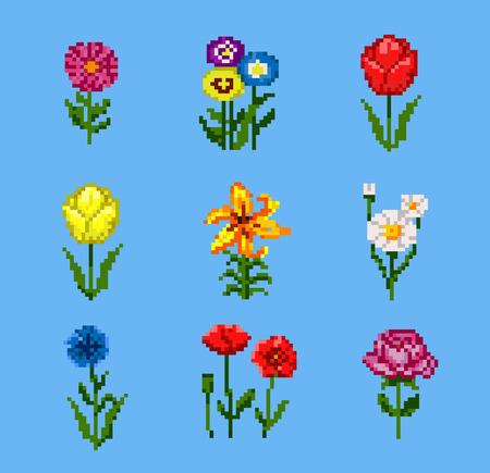Set of Various Pixel Flowers Illustration