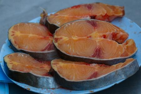 shark catfish: Fresh fish,Iridescent shark, Striped catfish, Sutchi catfish.