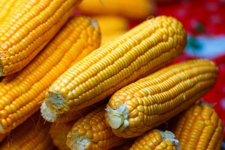 Corn, vegetables, fresh food in Thailands market.