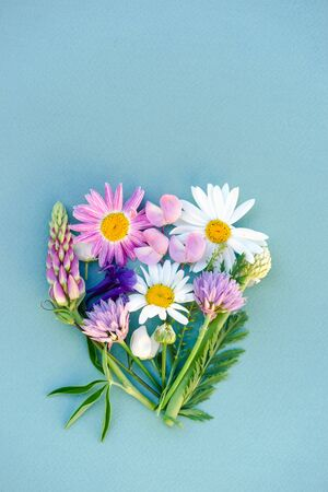 a variety of wild flowers, daisies, lupine, onions and herbs, a flat bouquet in the form of a heart on a paper blue background, Botanical pattern.