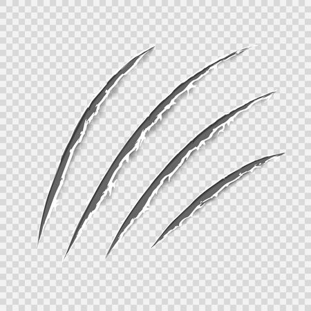 Black realistic claws animal scratch scrape track. Cat tiger scratches paw shape. Four nails trace. Damaged cloth. Ragged edges. Transparent background. Isolated. Vector illustration.