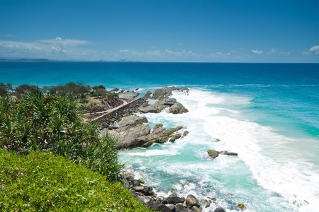 tectorius: australian seascape during the day with native trees in foreground (tweed heads,nsw)