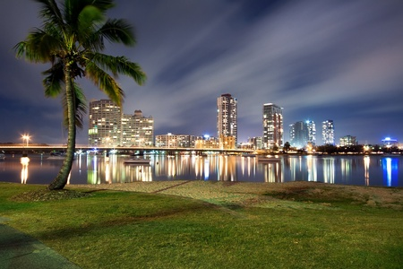 southport at night with palm in foreground (southport, queensland, australia)