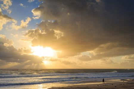 surfers: Australian beach at sunrise (Gold Coast, Surfers Paradise, QLD, Australia)