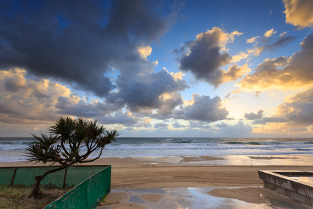Australian foreshore early morning (Gold Coast, Surfers Paradise, QLD, Australia)