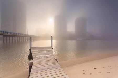qld: Foggy morning in the centre of big modern Australian city (Gold Coast, Surfers Paradise, QLD, Australia)