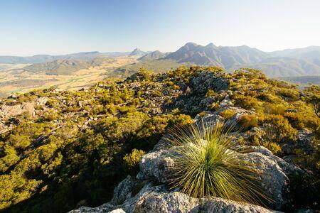 On the summit in Mt Maroon,Mount Barney National Park,QLD,Australia