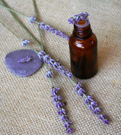Bunch of lavender flowers and bottle of essential oil on sackcloth background in a spa composition photo