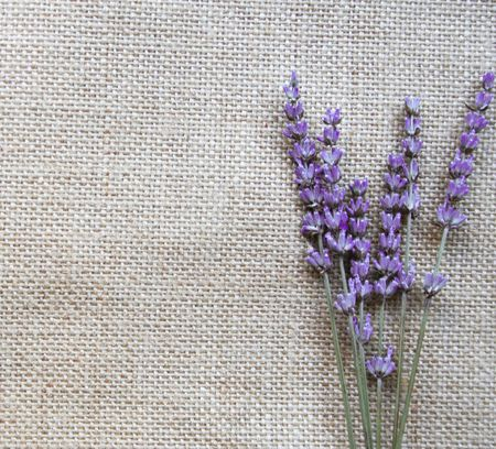Bunch of lilac lavender flowers on sackcloth background