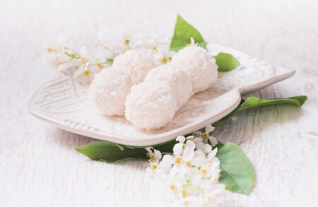 White chocolate candy witch coconut, branch of bird-cherry photo