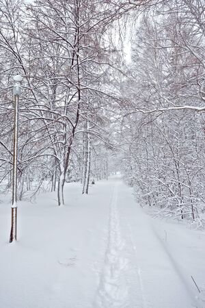 snow road: frozen winter snow road on the street