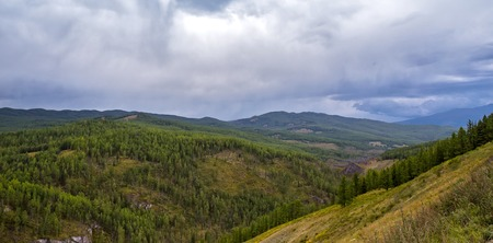 ulagan: green forest mountains pass Ulaganskiy. Altai, Russia