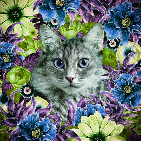 brigh: Kitten face framed floral wreath painted in summer brigh color