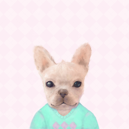 Portrait of French Bull dog puppy in a aqua sweater on a pink checked background, watercolor painting Stock Photo